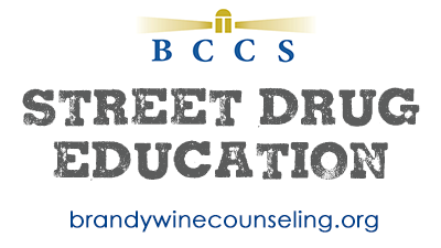 street drug education brandywine counseling community services